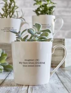 Sips mug